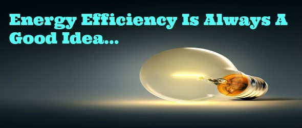 Light Bulbs, Energy Efficiency, and Cost